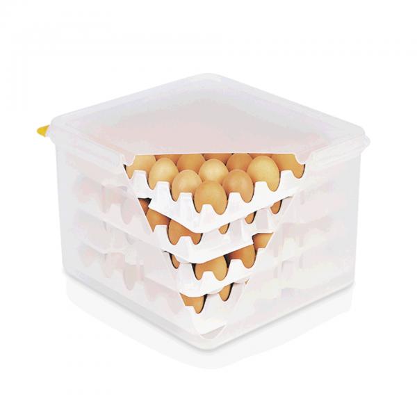 Eierbox HACCP, 35,4 x 32,5 x 20 cm, Polypropylen